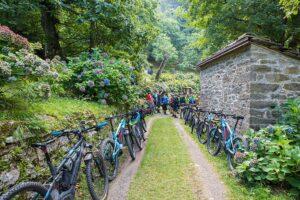 E Bike in mezzo alla natura: Porrettana Gomme. Noleggio E Bike, Noleggio bici elettriche. Biciclette elettriche. E Bike km 0. E bike bologna. E bike piacenza. Bici elettrica bologna. Bici elettrica piacenza.